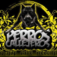 Videos: Perros Callejeros | Final, Guadalajara – 2010