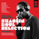 The RZA - Shaolin Soul Selection Volume 1 (2013)