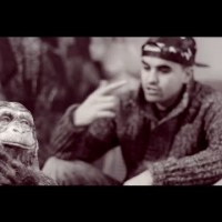 Video: Shotta | Sincero