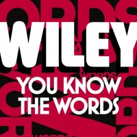 Video: Wiley | You know the words