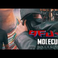 Video: Afu-Ra | Molecular ft. Jah Mason & Rocca