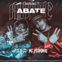 Video: Felp 22 & Mc Pedrinho | Abate