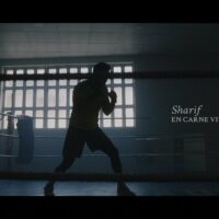 Video: Sharif | En carne viva